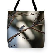 A Chipping Sparrow Tote Bag