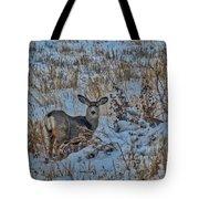 A Christmas Day Young Buck Tote Bag