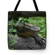 A Close Up Look At A Komodo Dragon Lizard Tote Bag