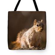 A Close-up Of A Fox Squirrel Sciurus Tote Bag