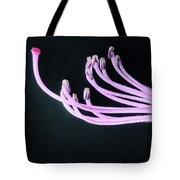 A Close Up Of The Reproductive Parts Of Tote Bag