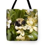 A Close View Of A Bumblebee Pollinating Tote Bag