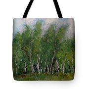 A Cluster Of Birch Tote Bag