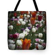 A Cluster Of Tulips Tote Bag