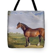 A Clydesdale Stallion Tote Bag by John Frederick Herring Snr