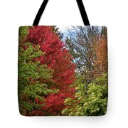 A Collection Of Fall Colours Tote Bag