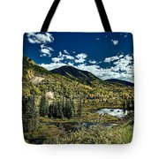 A Colorado Autumn Tote Bag