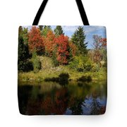 A Colorful Reflection Tote Bag