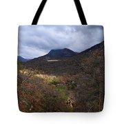 A Colorful Scene Of Burned And Lush Interspersed Foliage In The Southwest Foothills Of The Sierra Ne Tote Bag