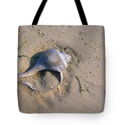A Conch Shell Lies In The Sand Tote Bag