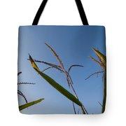 A Corn Field At The Historic Waveland Tote Bag