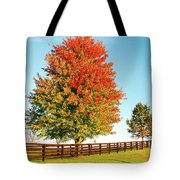 A Country Autumn Tote Bag