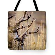 A Couple Of Bucks Tote Bag