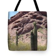 A Couple Of Cacti In Phoenix Tote Bag