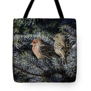A Couple Of House Finch Tote Bag by LeeAnn McLaneGoetz McLaneGoetzStudioLLCcom
