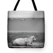 A Cow On The Beach Tote Bag