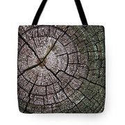 A Cut Above - Patterns Of A Tree Trunk Sliced Across Tote Bag