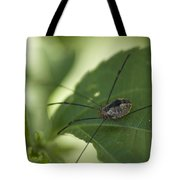 A Daddy Longlegs Spider Sits On A Leaf Tote Bag