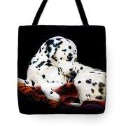 A Dalmatian Prince Tote Bag