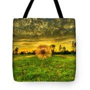 A Dandy Sunset Tote Bag