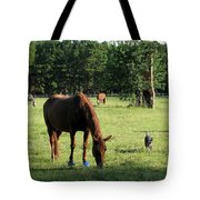 A Day At Chimney Field 1 Tote Bag