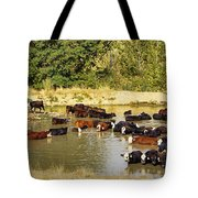 A Day At The Spa Tote Bag