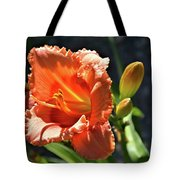 A Day In The Spotlight Tote Bag