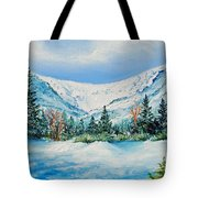 A Day In Tuckerman's Tote Bag