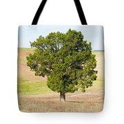 A December Cedar Tote Bag
