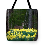 A Deer And Daffodils 4 Tote Bag