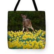 A Deer And Daffodils IIi Tote Bag