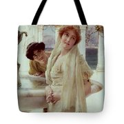 A Difference Of Opinion Tote Bag