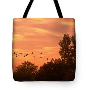 A Different Approach To Sunset Tote Bag