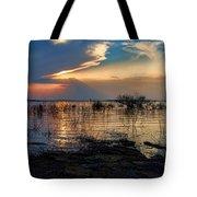 A Different Shoreline Tote Bag