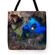 A Diver Peers Through A Coral Encrusted Tote Bag