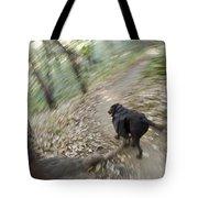 A Dog Backpacking On Pine Ridge Trail Tote Bag
