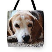 A Dog Thinking Tote Bag