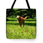 A Dogs Freedom Tote Bag