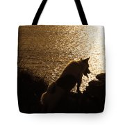 A Dogs View Tote Bag