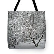 A Dogwood Sleeps While The Snow Falls Tote Bag