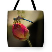 A Dragonfly Rests Momentarily On A Lotus Bud Tote Bag
