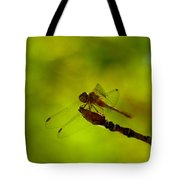 A Dragonfly Smile Tote Bag