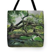 A Dramatic Change Of Perspective Tote Bag