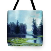 A Dreary Day At The Pond Tote Bag