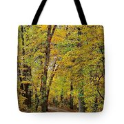 A Drive Through The Park Tote Bag