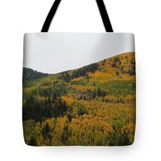 A Drive Throw The Forest In The Fall Tote Bag