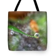 A Drop In Time Tote Bag