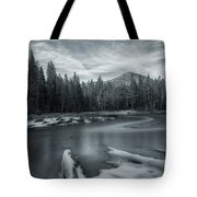 A Dry Winter 1 Tote Bag