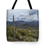 A Dusting Of Snow In The Sonoran Desert  Tote Bag