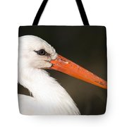 A European White Stork At The Lincoln Tote Bag